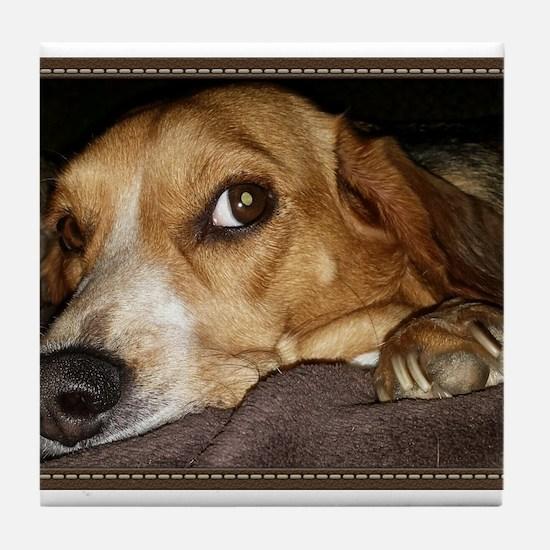 Beagle ~ One Love Tile Coaster