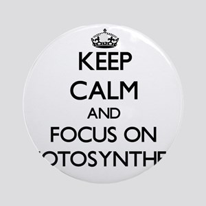 Keep Calm and focus on Photosynth Ornament (Round)