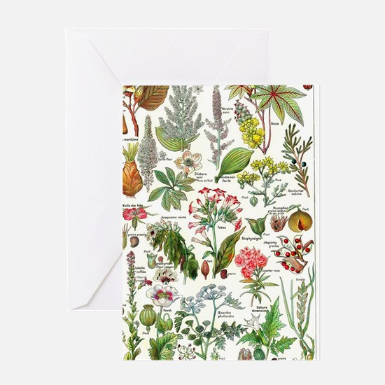 Botanical Illustrations - Larousse P Greeting Card