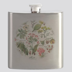 Botanical Illustrations - Larousse Plants Flask