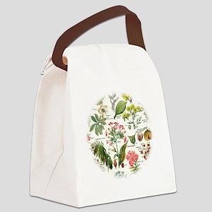 Botanical Illustrations - Larouss Canvas Lunch Bag