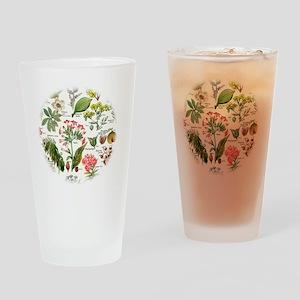 Botanical Illustrations - Larousse  Drinking Glass