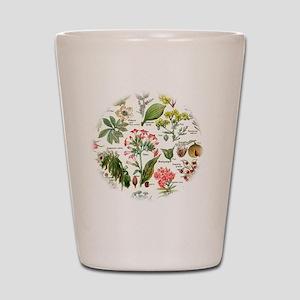 Botanical Illustrations - Larousse Plan Shot Glass