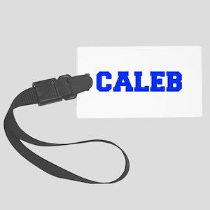 CALEB-fresh blue Luggage Tag