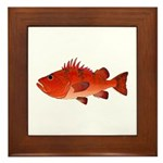 Cow Cod Framed Tile