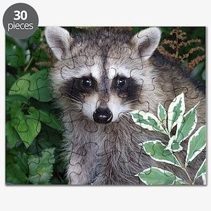 Baby Raccoon Photo Puzzle