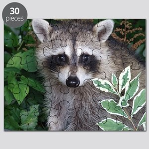 Baby Raccoon Photo Puzzle