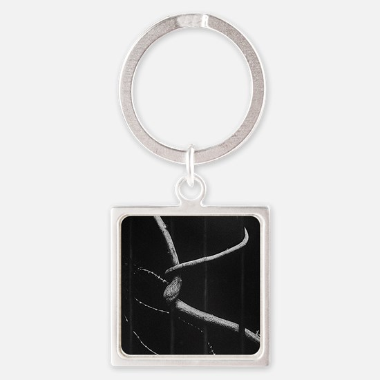 Funny 10x10 Square Keychain