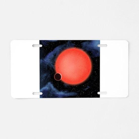 Unique Satellite Aluminum License Plate