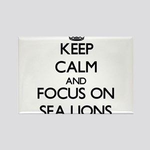 Keep Calm and focus on Sea Lions Magnets