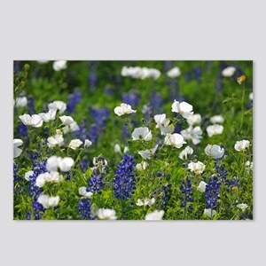 Blue and White Wildflower Postcards (Package of 8)