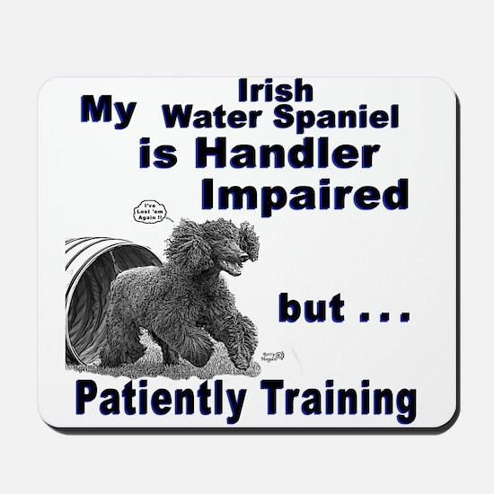 Irish Water Spaniel Agility Mousepad