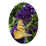 Peacock Butterfly on Purple sq Ornament (Oval)
