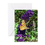 Peacock Butterfly on Purple sq Greeting Cards