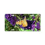 Peacock Butterfly on Purple sq Aluminum License Pl
