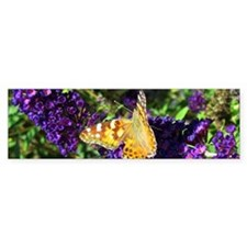 Peacock Butterfly on Purple sq Bumper Sticker