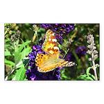 Peacock Butterfly on Purple sq Sticker