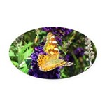 Peacock Butterfly on Purple sq Oval Car Magnet
