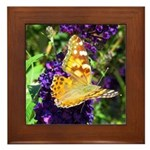 Peacock Butterfly on Purple sq Framed Tile