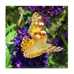 Peacock Butterfly on Purple sq Tile Coaster