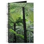 Fern Forest Journal