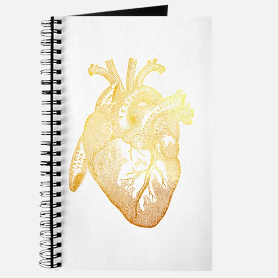 Anatomical Heart - Gold Journal