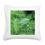 Tree Hopper on Pine Square Canvas Pillow