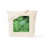 Tree Hopper on Pine Tote Bag