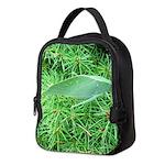 Tree Hopper on Pine Neoprene Lunch Bag