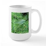 Tree Hopper on Pine Mugs