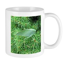 Tree Hopper on Pine Mugs