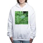 Tree Hopper on Pine Women's Hooded Sweatshirt