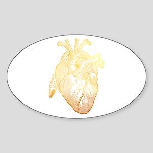 Anatomical Heart - Gold Sticker