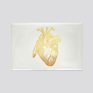 Anatomical Heart - Gold Magnets