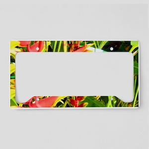 Tropical License Plate Holder