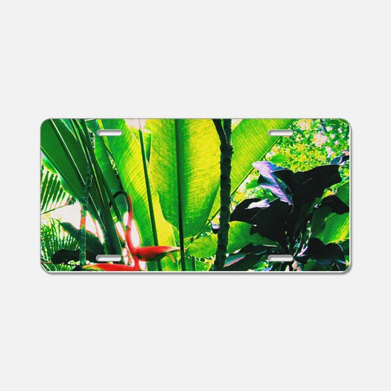Tropical 2 Aluminum License Plate