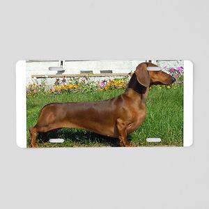dachshund full Aluminum License Plate