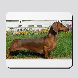 dachshund full Mousepad