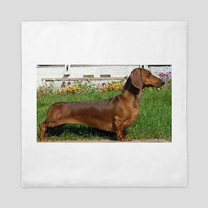 dachshund full Queen Duvet