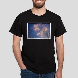 Eagle Diving for Fish Dark T-Shirt