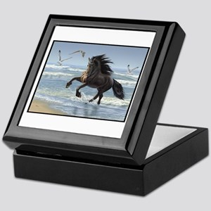 Friesian - Splash Dance Keepsake Box