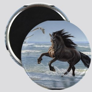 Friesian - Splash Dance Magnet