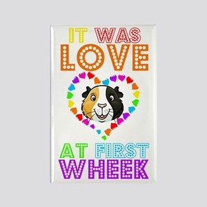 IT WAS LOVE AT FIRST WHEEK Magnets
