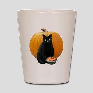 Black Cat Pumpkin Shot Glass