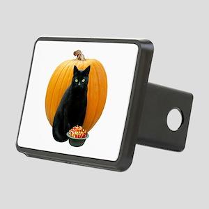 Black Cat Pumpkin Rectangular Hitch Cover