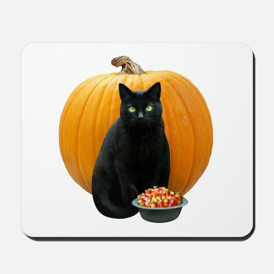 Black Cat Pumpkin Mousepad