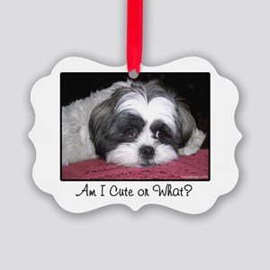 Cute Shih Tzu Dog Picture Ornament