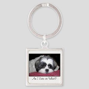 Cute Shih Tzu Dog Keychains