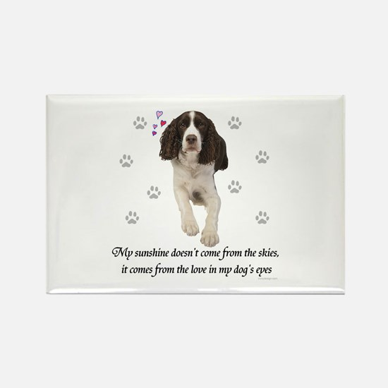 English Springer Spaniel Magnets