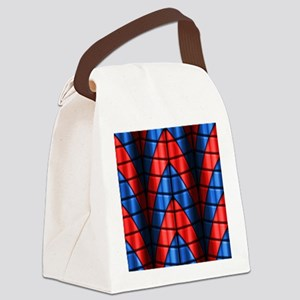 Superheroes - Red Blue Canvas Lunch Bag